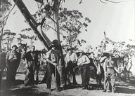 Re-enactment of Blue Mountains crossing in 1813 by Blaxland, Lawson and Wentworth