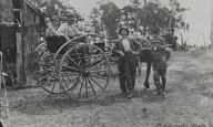 John Ward&#39;s sons and Jack Duncan (on left in sulky), Megalong Valley